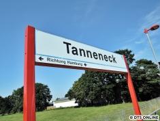 Tanneneck, 03.08.2015 (3)