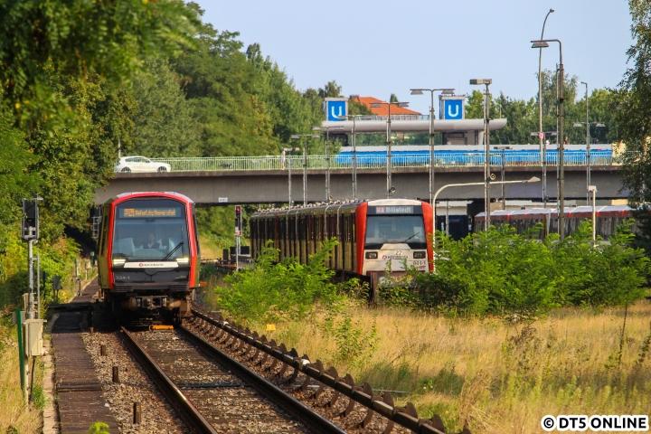 Am 27. August begegneten sich DT5 334 und DT3 801 zwischen Billstedt und Legienstraße. Nachdem am 10. Dezember bereits ein DT3-Pendelzug an ähnlicher Stelle gezeigt wurde, folgt heute ein merklich sommerliche(re)s Bild. Der DT3-Neunwagenzug hatte es die Tage zuvor tatsächlich zu Einsätzen auf Plankursen gebracht. Übrigens: Im August standen mancherorts mal ein paar DT3 zwischengeparkt, da die Verstärker auf der U1 nicht gefahren wurden. So auch in Billstedt…
