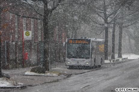 Am Mittag des 30. Januar kam nochmal ein wenig dichterer Schnee hinunter, den VHH-Bus 1613 fotografierte ich mit ein wenig Abstand an der Haltestelle Valvo in Langenhorn.