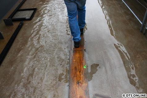 Es hatte geregnet, sodass einiges unter Wasser stand.