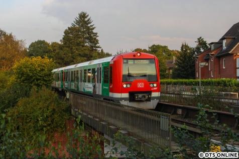Eine S-Bahn im Grünen: Die Sonne ist inzwischen zu weit gezogen, und leuchtet hier kaum noch aus. Ein sehr ungewohnter Blick, denn eigentlich geht der Weg einige Meter tiefer zum Ausgang.