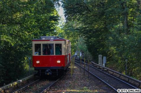 Der TU-Zug erreicht Ohlstedt