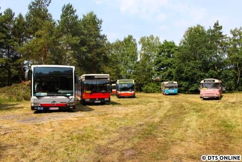 Ein Blick in die Runde: Neuster Zugang ist der 2017 ausgeschiedene Schnellbus 6417.
