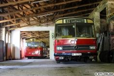ex HHA 6499, Büssing Präfekt 13 D, Typ Hamburg, Baujahr 1965 (links) mit 6789 (rechts)