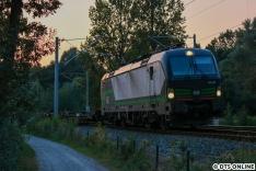 Kurz darauf folgte ein Zug der TX Logistik zum Lübecker Skandinavienkai, für den es eigentlich schon zu dunkel war. Insbesondere aufgrund der Lokfarbe... Da dieses Bild aber gute neun Mückenstiche allein nur bei mir kostete, sollte es nicht ungezeigt bleiben.