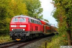 Da der BÜ unten blieb, packte ich schon einmal langsam wieder alles ein. Dann hörte ich die 218 in der Ferne und schaffte es rechtzeitig bis an die Schranke, um den RE von Lübeck nach Kiel festzuhalten. Die Lok ist eigentlich in Kempten beheimatet...